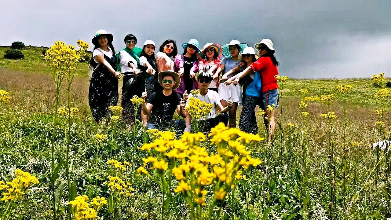 多彩贵州 乌蒙大草原