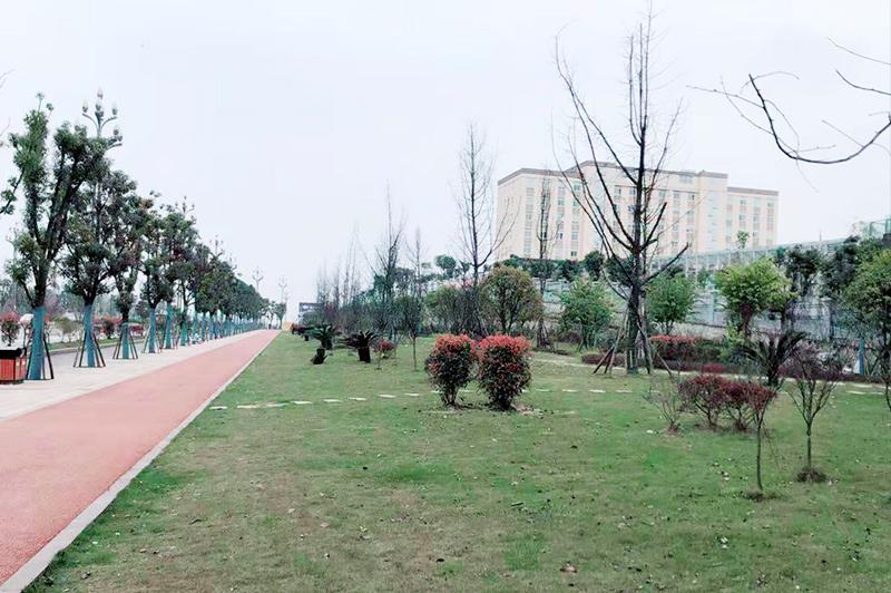 宜宾市翠屏区(一期B区)道路   管网等设施建设项目